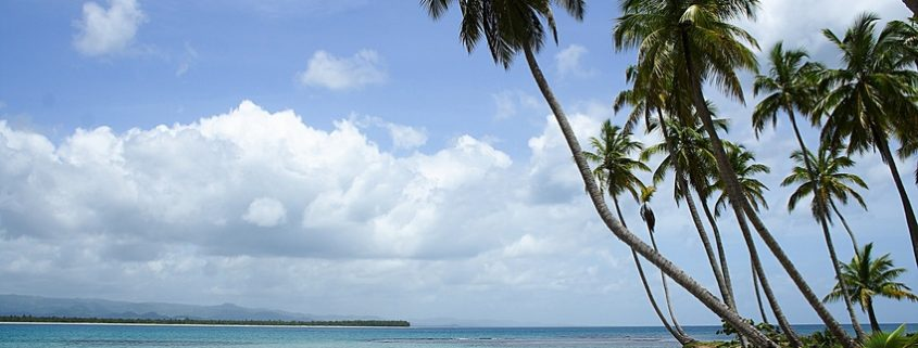 Mit gesunden Zähnen unter Palmen in der Karibik, Fotolia (c)Henner